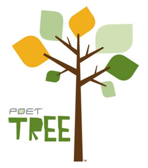 Benefits Of Tree Planting Benefits Of