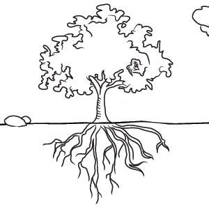 School Campus Tree Planting - A Narrative Report - Blogger