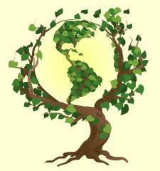 Tree planting activity essay